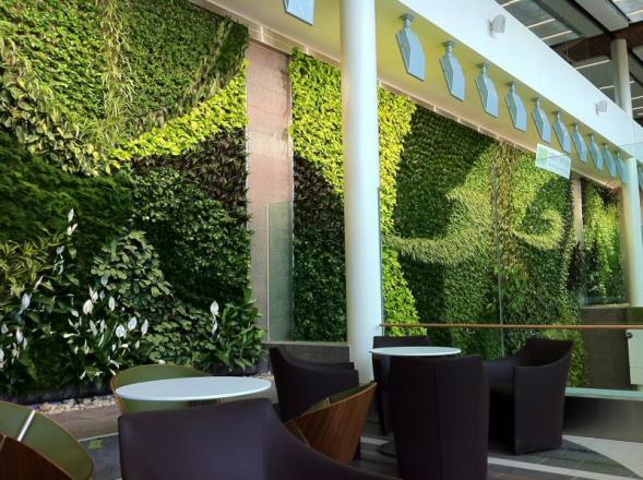 Zelená stěna na letišti v Edmontu