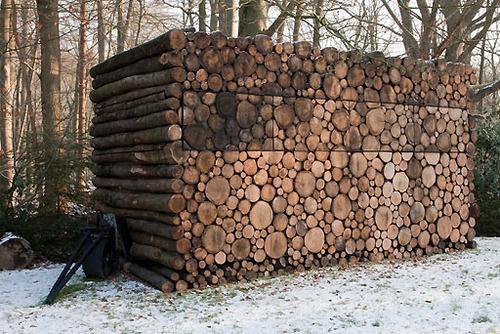 Dům z kmenů stromů