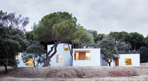 Dům OM- propletený mezi stromy