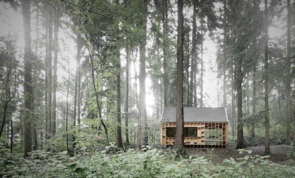 Lesní pozorovatelna
