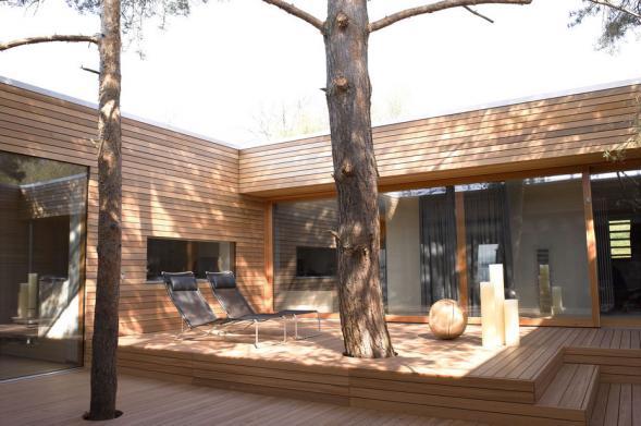 Dům se stromem uprostřed