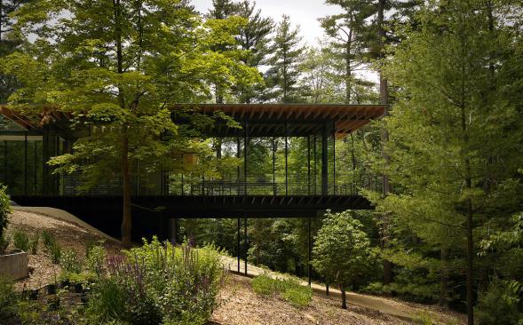 Dům Glass/Wood