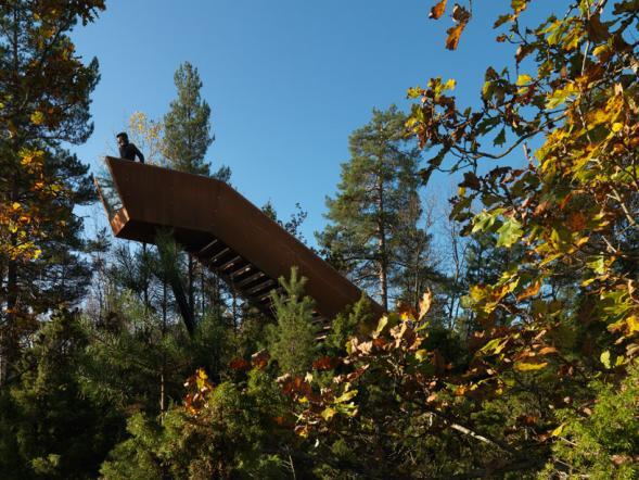 Lesní schody